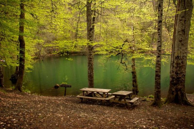 Yedigöller Milli Parkı ile ilgili görsel sonucu